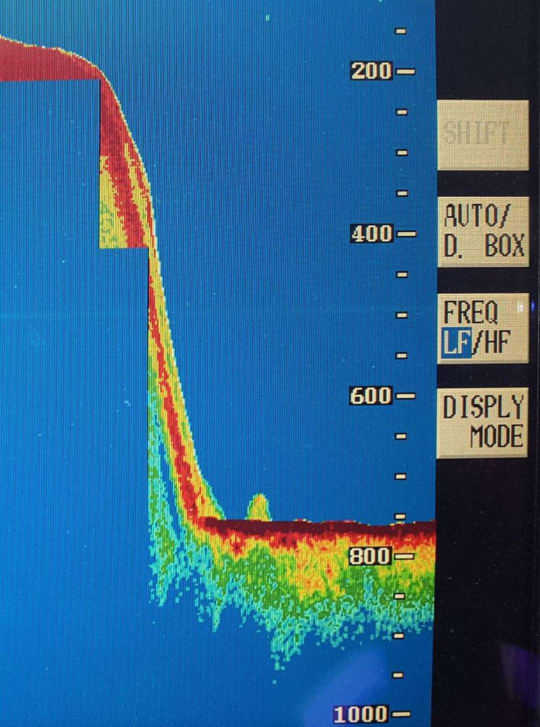 Sonar Image taken by Jacobite Cruise boat skipper Rod Michie...see story Mike Merritt...pic Peter Jolly