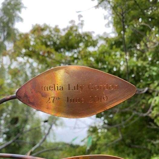 The Tranqulity tree was planted by Amelia Gordon's owner.